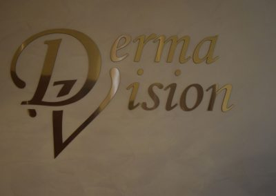 DermaVision (2)